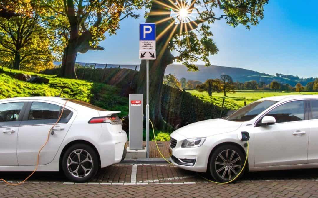 3 små elbiler der ikke koster en halv bondegård